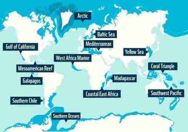 World's Largest Oceans and Seas