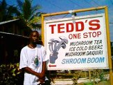 You want fun? Teds One stop Mushroom shop!